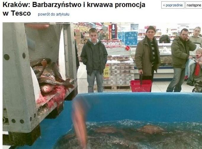 Krwawa rzeź karpi w hipermarketach!