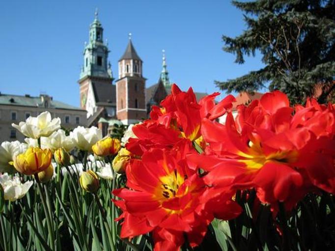 Katedra na Wawelu w Krakowie