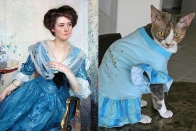 Koty kontra obrazy