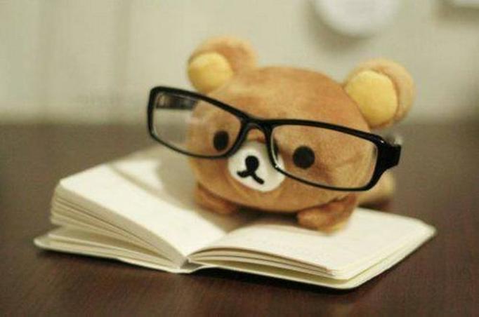 studia dzienne