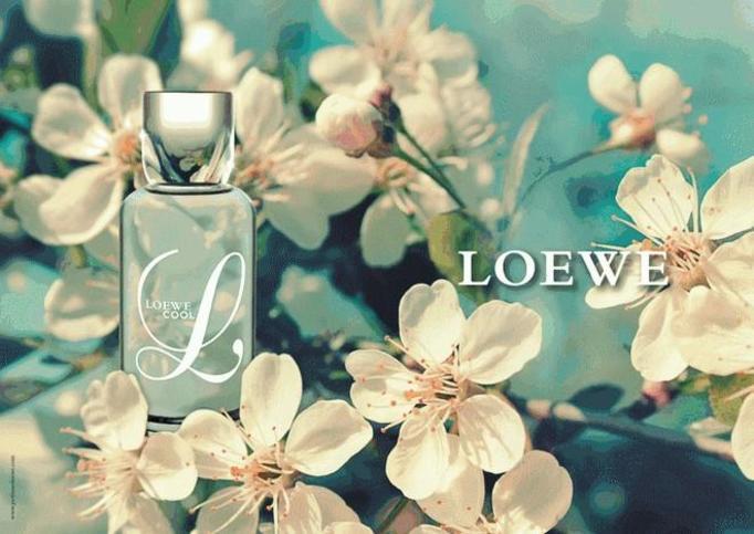 L Loewe Cool