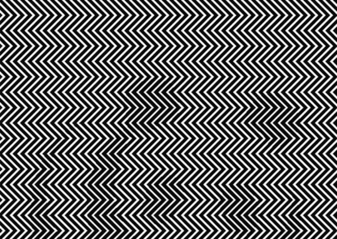 Tylko 1 na 10 osób widzi na tym obrazku zwierzę. A Ty je ...