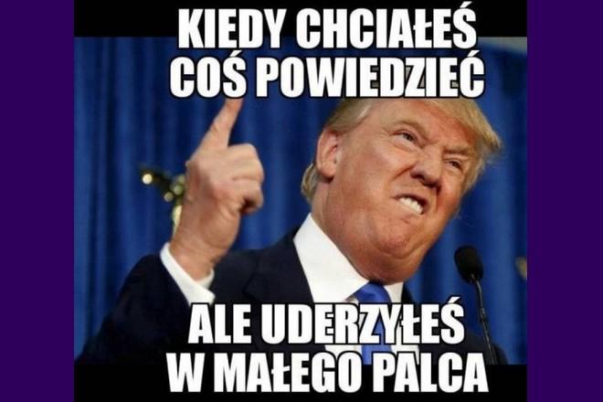 Donald Trump memy o wyborach